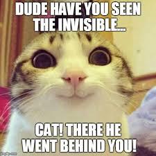 Invisible Cat Meme - smiling cat meme imgflip