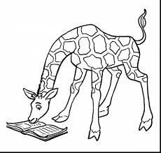 terrific printable giraffe coloring pages for kids with giraffe