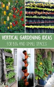 Garden Ideas For Small Spaces Small Space Gardening Ideas 17 Best Ideas About Small