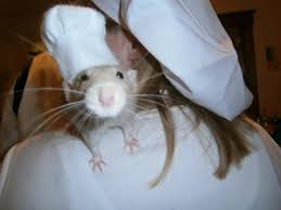 Halloween Rat Costume Halloween Costume Linguini Remy Ratatouille Imgur