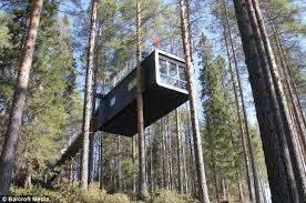 tree hotel sweden tree hotel in sweden where rooms are 40ft up daily mail online