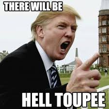 Best Memes Of 2012 - 24 best hilarious political memes of 2012 images on pinterest