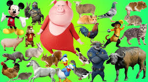 animals farm for kids learn animals farm with cartoon u0026 real