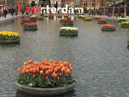 it u0027s nearly spring and amsterdam is ready to celebrate with