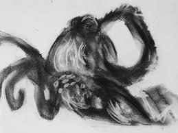 octopus sketch by melissrrr on deviantart