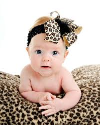 bow headbands chic cheetah trendy baby bow headband leopard baby