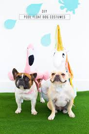 diy pool float costume for the pups diy pool pool floats and