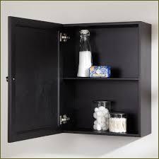 plastic medicine cabinet shelves plastic medicine cabinet shelf shelves