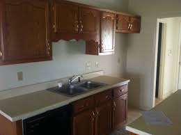 Install A Dishwasher In An Existing Kitchen Cabinet How To Remodel A 20 Year Old Kitchen For Less Than 3 000
