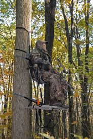 for tree stand regulations from the field