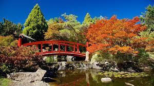 Botanic Gardens Hobart Visit Royal Tasmanian Botanical Gardens In Hobart Expedia