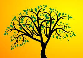 free illustration tree leaves leaf branches free image on
