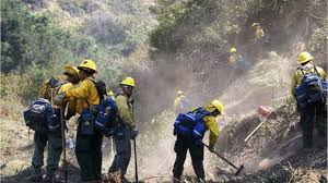 Wildfire History by Los Angeles Sees Largest Wildfire In City U0027s History Youtube