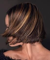 honey brown haie carmel highlights short hair 35 glamorous dark brown hair with highlights creativefan