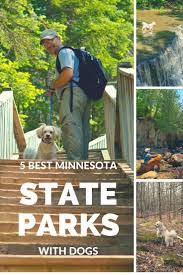 Minnesota top travel images 4241 best on the road with dogs images road trips jpg