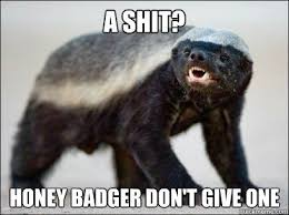 Honey Badger Meme - honey badger don t give a shit laugh muchh 3 pinterest honey