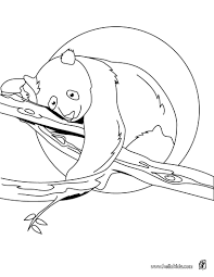 panda on tree coloring pages hellokids com