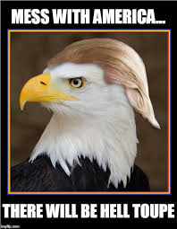 America Eagle Meme - symbol of america imgflip