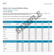 Total Compensation Statement Template by Radford Global Technology Compensation Survey
