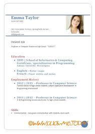 curriculum vitae for job application pdf sle cv form carbon materialwitness co