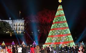 5 of the most beautiful christmas trees in america