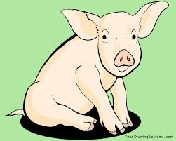 how to draw a pig u2013 your drawing lessons