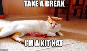 Make Your Own Cat Meme - kit kat cat take a break i m a kit kat image tagged in funny