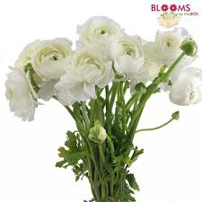 Bulk Wedding Flowers Wholesale Flowers Bulk Wedding Flowers Online Bloomsbythebox Com