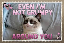 Grumpy Cat Meme Valentines Day - imgur just updated their cover photo on facebook imgur