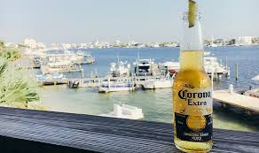 alcohol in corona vs corona light top 7 flavourful beers for people who don t really like beer from