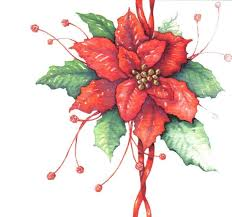 Pointsettia 438 Best Christmas Poinsettia Images On Pinterest Christmas