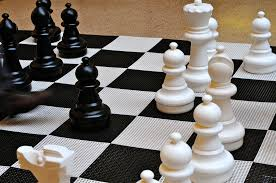 top 5 books about chess openings