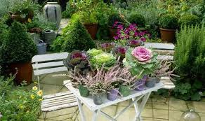 Plants For Winter Window Boxes - alan titchmarsh tips for a colourful autumn garden garden life