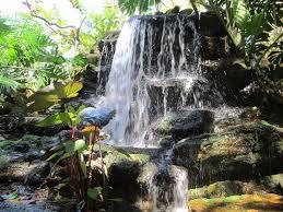 Botanical Gardens Sarasota Fl Longboat Key Sarasota Island Florida Destinations