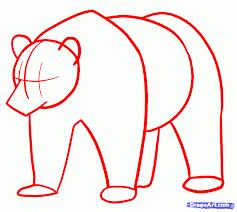 drawn bear dragoart pencil and in color drawn bear dragoart