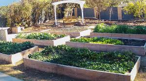 pt 1 homestead update with cover crops raised beds and crop