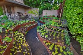 enjoyable ideas raised bed vegetable garden design layout photo