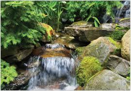 backyards splendid waterfall 41 small outdoor ponds waterfalls