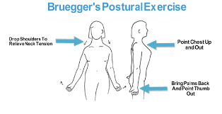 Armchair Exercises For The Elderly Dvd Top Exercises To Improve Posture That You Can Do Today