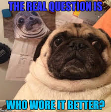 Funny Pug Memes - funny pug meme imgflip