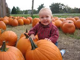 2015 pumpkins mazes u0026 other halloween fall events east memphis moms