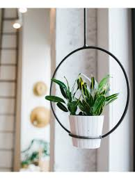 Wall Plant Holders Plant Stand Arched Metal Plant Holders For Fences Holder Pots