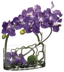 Vase With Twigs Purple Vanda Orchids With Twigs In Water Garden Glass Vase