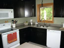 Kitchen Design Pictures Dark Cabinets Small L Shaped Kitchen Like Yours With Dark Cabinets And White