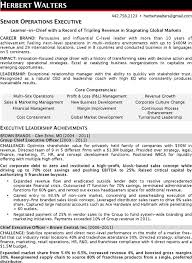 Sample Ceo Resumes by Ceo Resume Template Download Free U0026 Premium Templates Forms