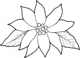 poinsettia coloring pages poinsettia flower printable template coloring home