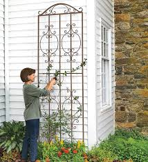 Metal Garden Trellis Uk 32