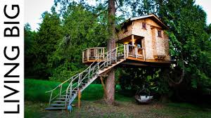 Real Treehouse Big Tree Houses U201eokay Letu0027s Meet In The Big Tree In Your