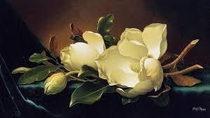 Magnolia Wallpaper Magnolia Wallpaper Blooms Fragrant Chinese Still Life Full Hd