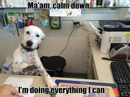 Chill Meme - just chill ma am by kadavirus meme center